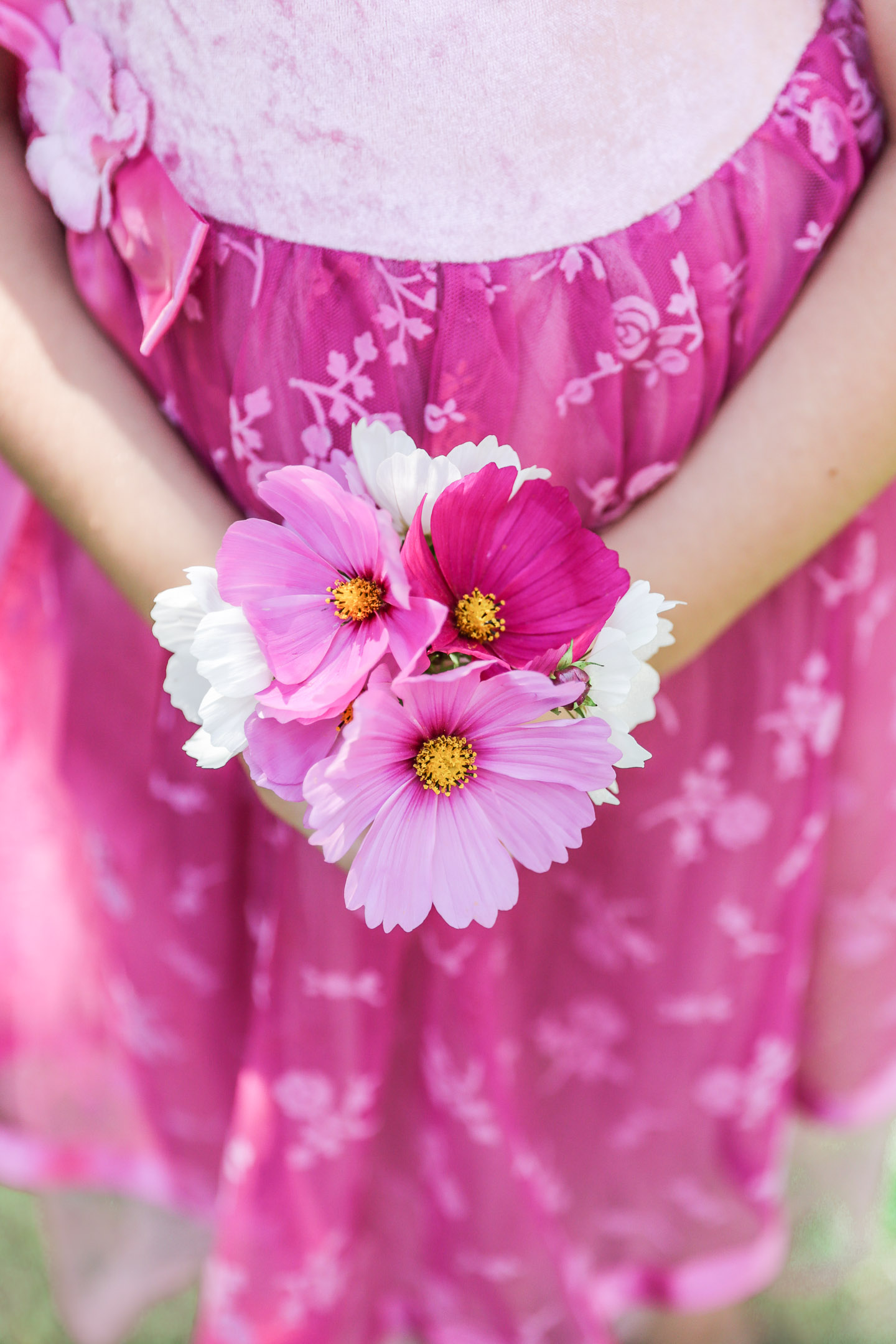 A girl holding a small bouquet of cosmos.
