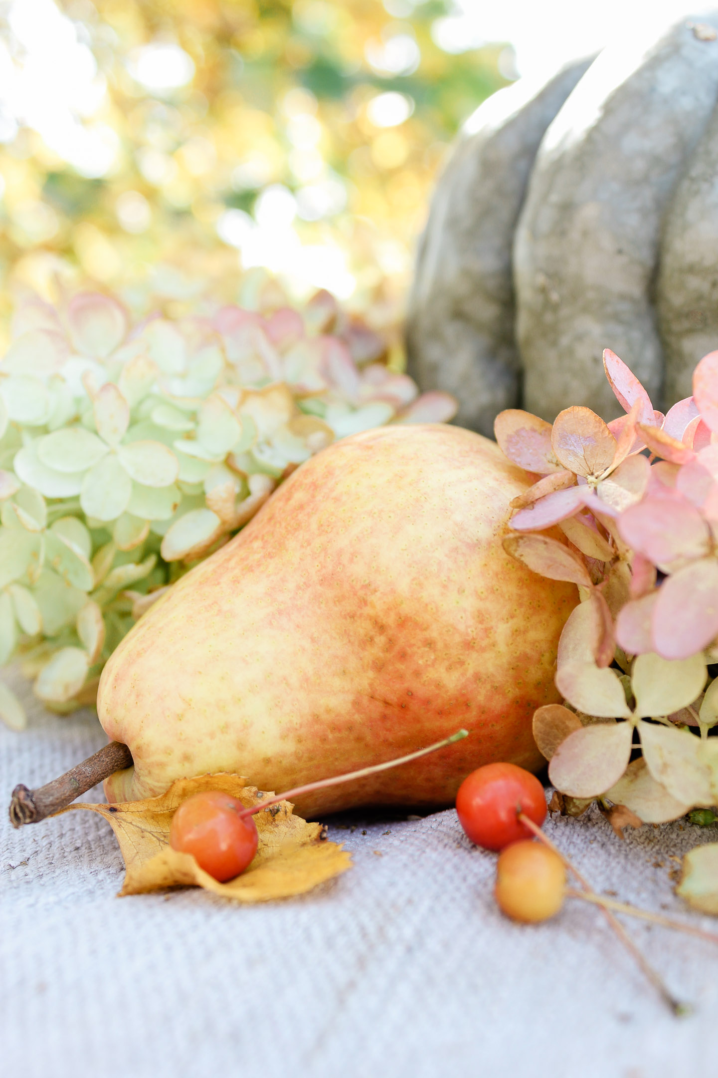 A pear surrounded by berries and hydrangea blossoms.