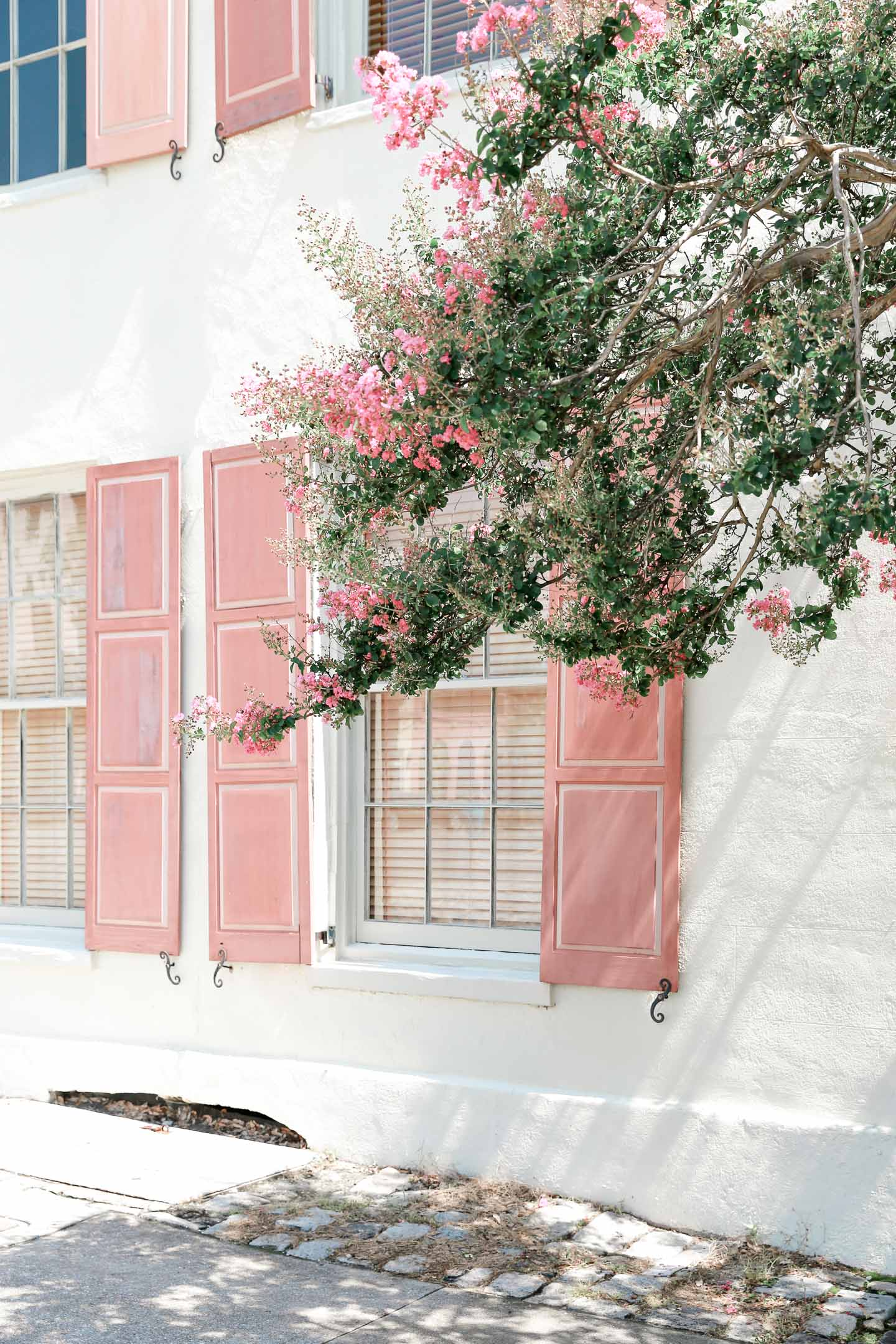 A white stucco building with pink shutters in Charleston.