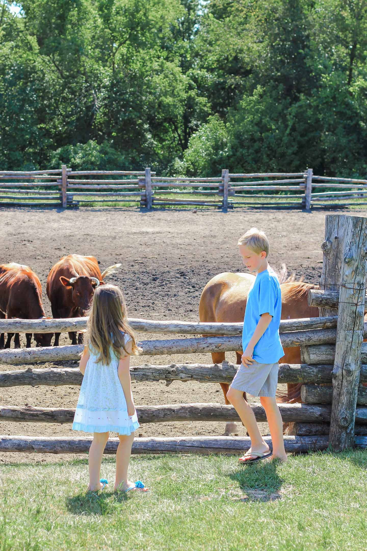 Two kids in a barnyard.