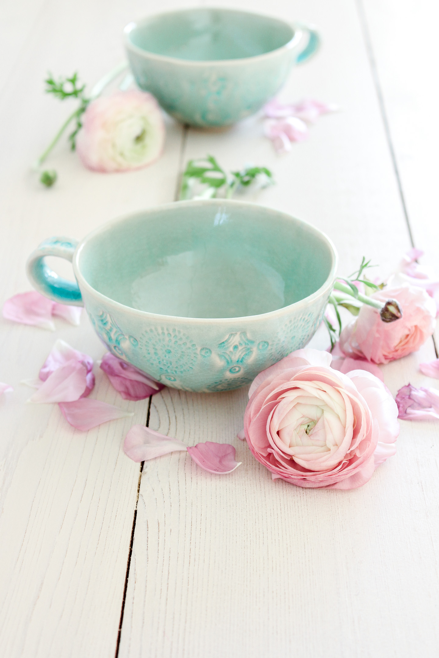 Pink pastel ranunculus flowers with blue turquoise cups.