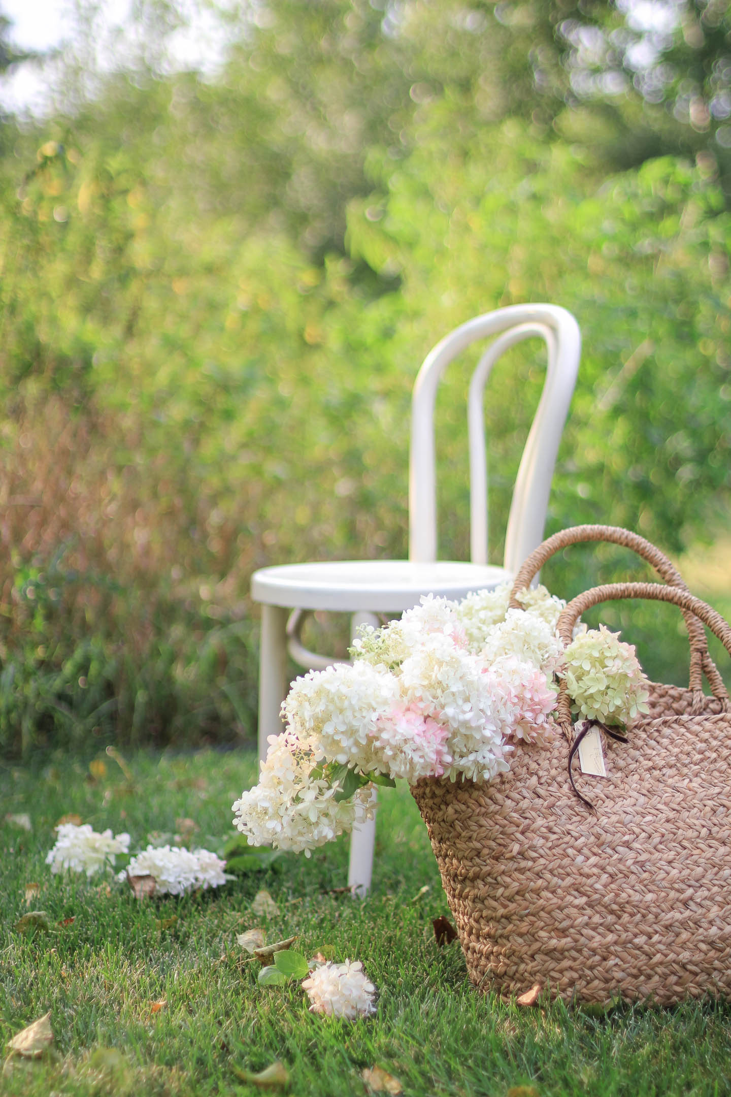 White, pink and green hydrangeas in a woven bag sitting outdoors in the grass.