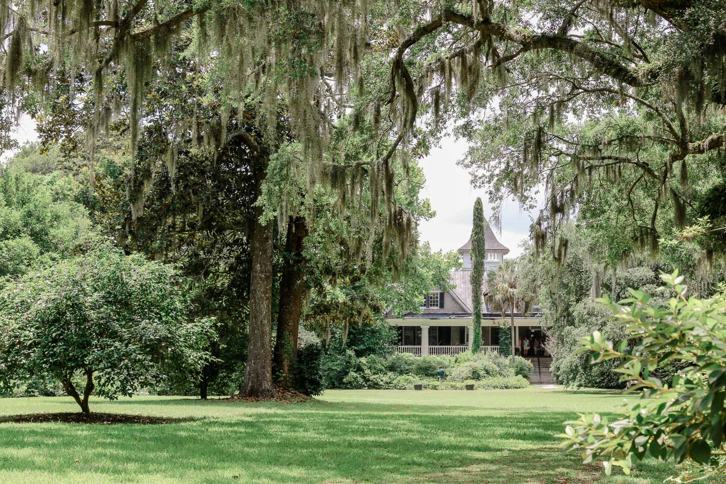 A house surrounded by trees draped in Spanish moss.